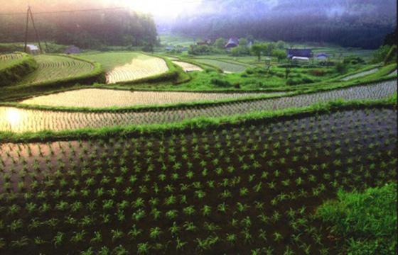 福知山の豊かな環境